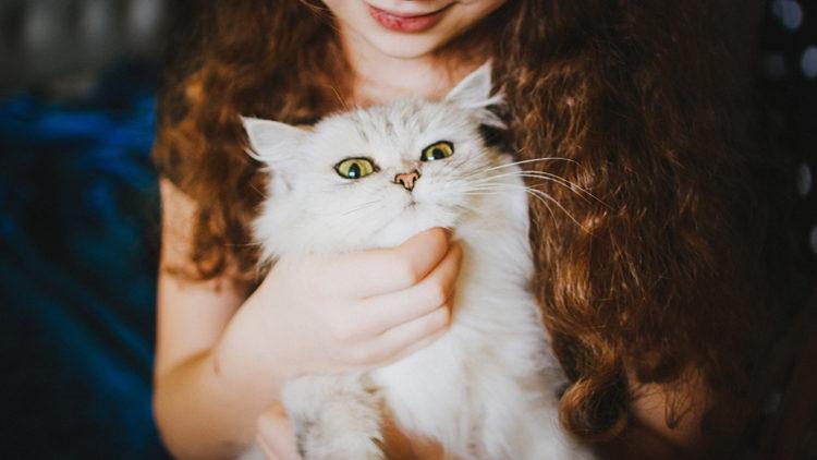 ¿Sabes como SÍ coger a tu gato en brazos?