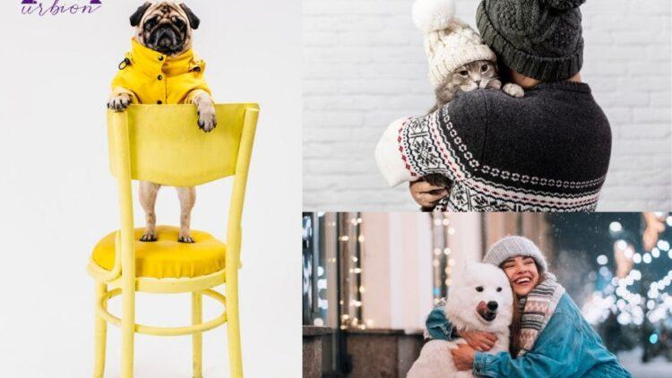 Vuelve el frío, así es como debes proteger a tu mascota.
