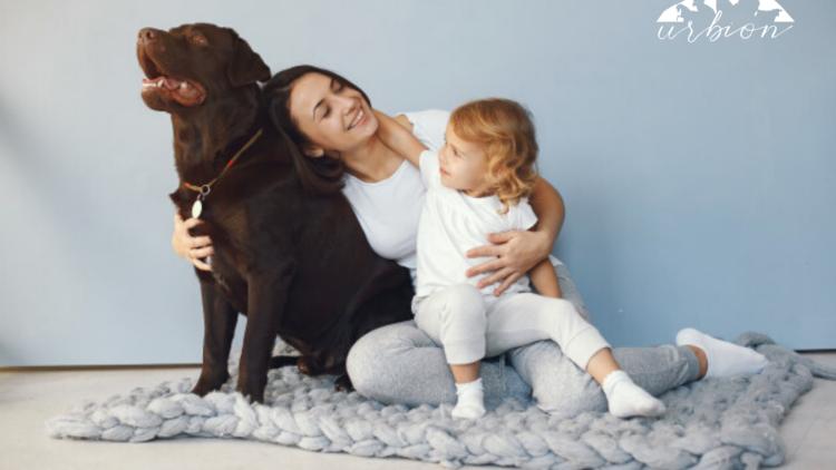 Las mascotas durante el confinamiento: Efectos terapéuticos